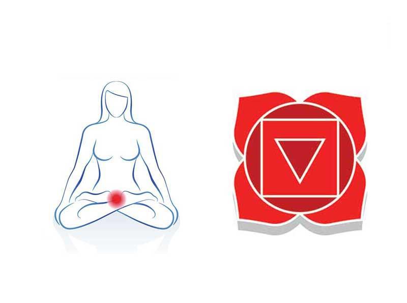 Le chakra racine (naturopathie holistique)